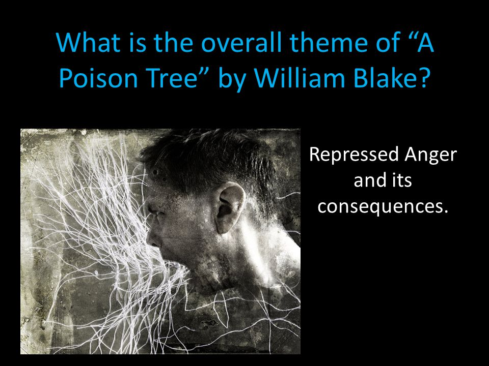 growing anger in a poison tree by william blake A poison tree by william blake describes the growing anger in a man because of his hatred for an adversary blake compares the growing of anger to the growth and the budding of a tree.