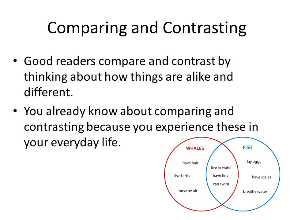 good things to compare and contrast Two things to compare and contrast for an essay - confide your report to experienced scholars employed in the platform use this company to order your sophisticated.