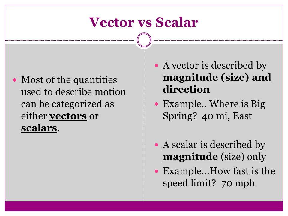 Scalar vs vector quiz