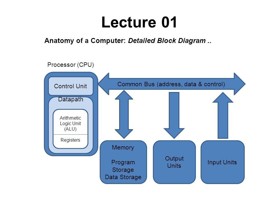 Csc 221 computer organization and assembly language ppt download anatomy of a computer detailed block diagram ccuart Choice Image