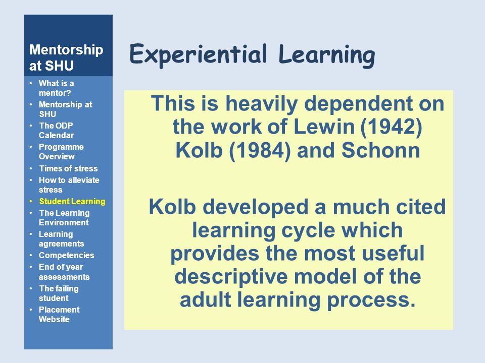 Has analogue? Adult and experiential learning