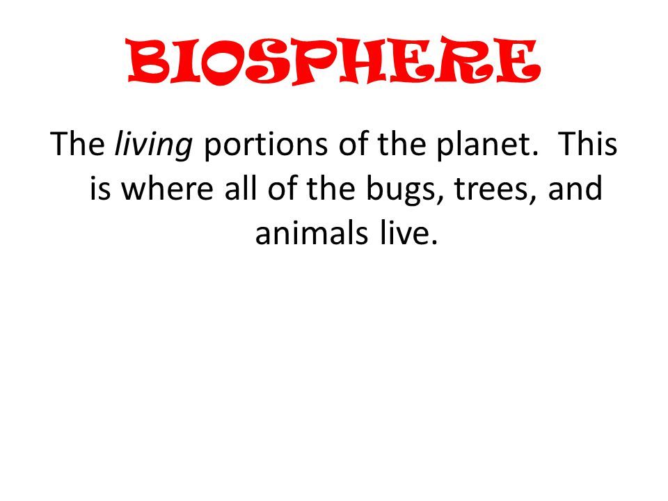 BIOSPHERE The living portions of the planet.