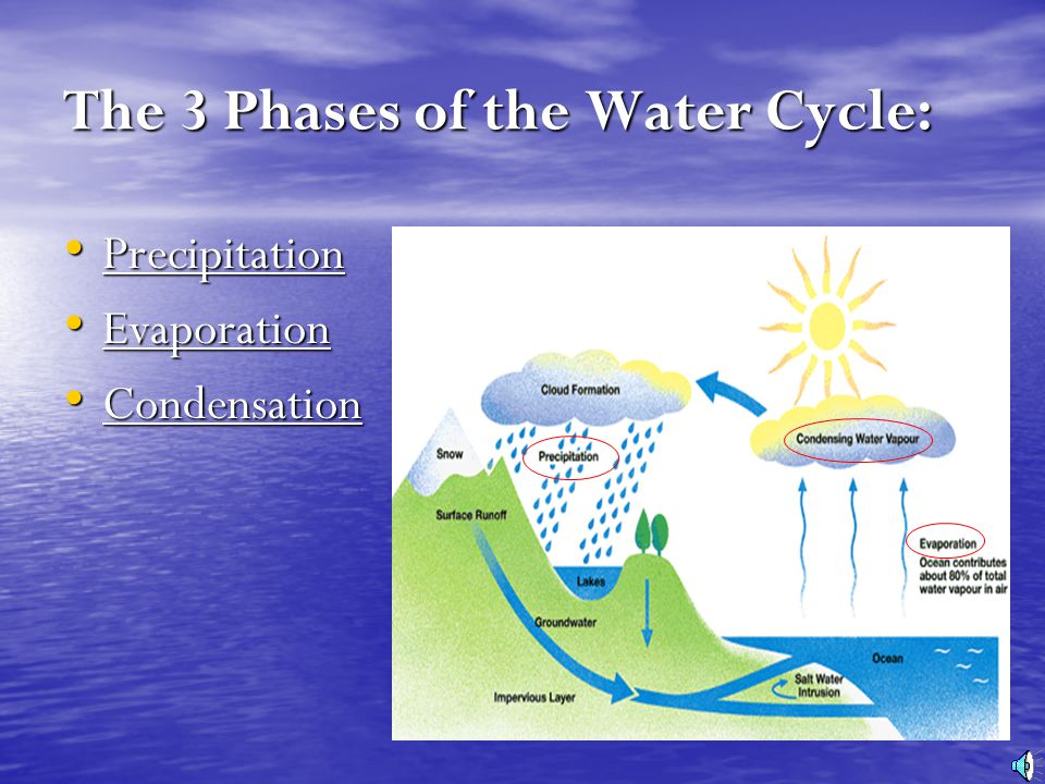 The 3 Phases Of Water Cycle