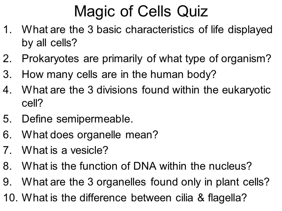 cell theory types of cells organelles ppt video online