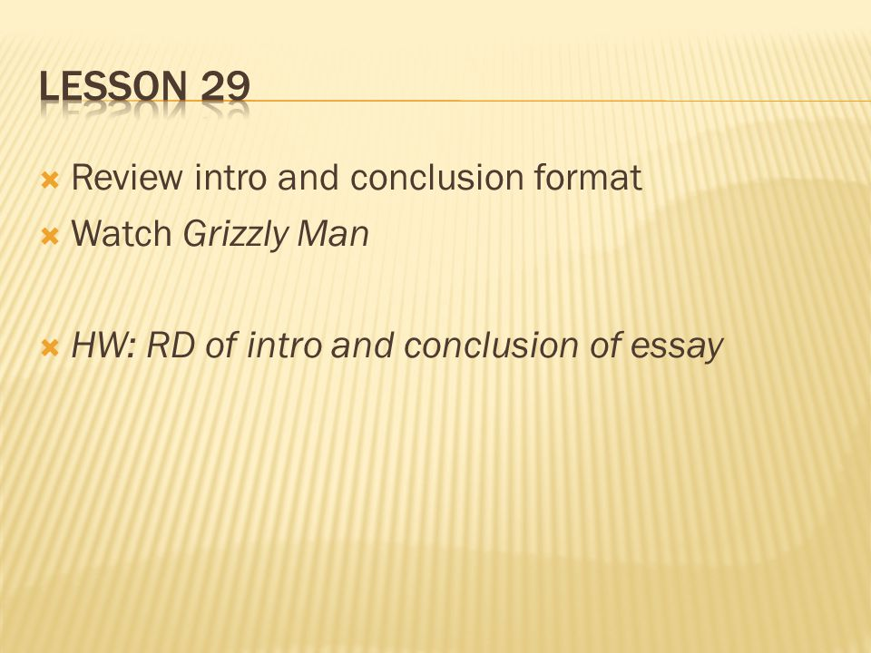 grizzly man essay