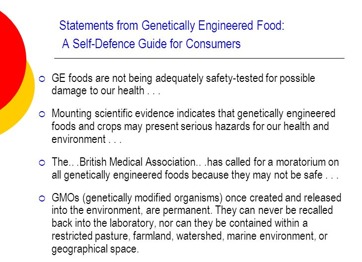 genetically modified food 14 essay