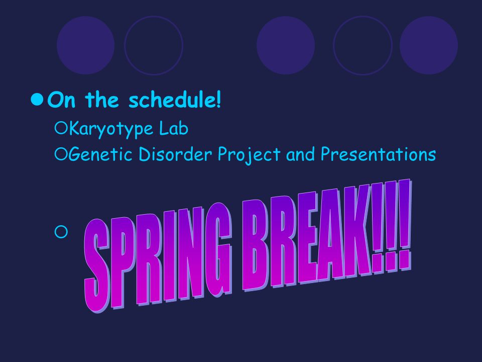 SPRING BREAK!!! On the schedule! Karyotype Lab