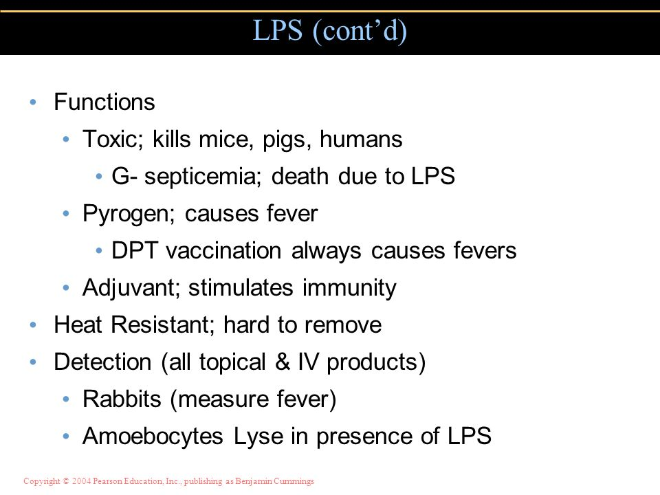 LPS (cont'd) Functions Toxic; kills mice, pigs, humans