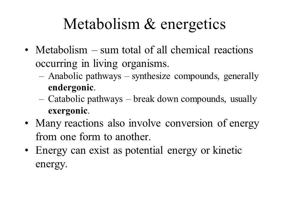 Metabolism & energetics