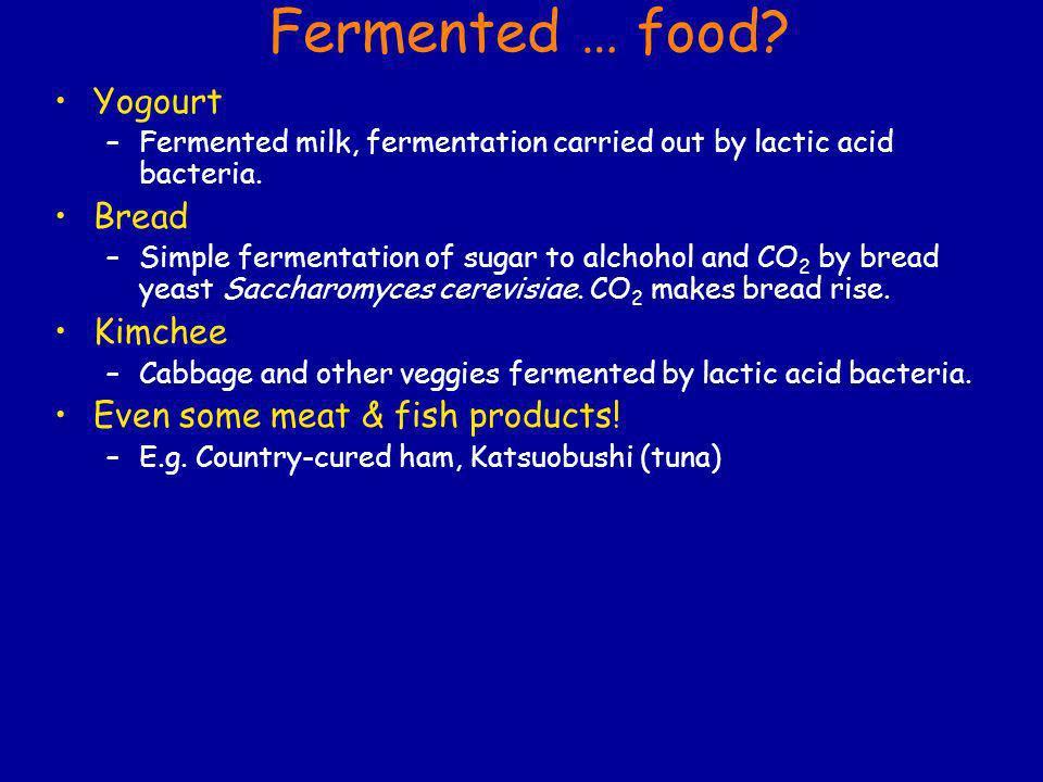 Fermented … food Yogourt Bread Kimchee