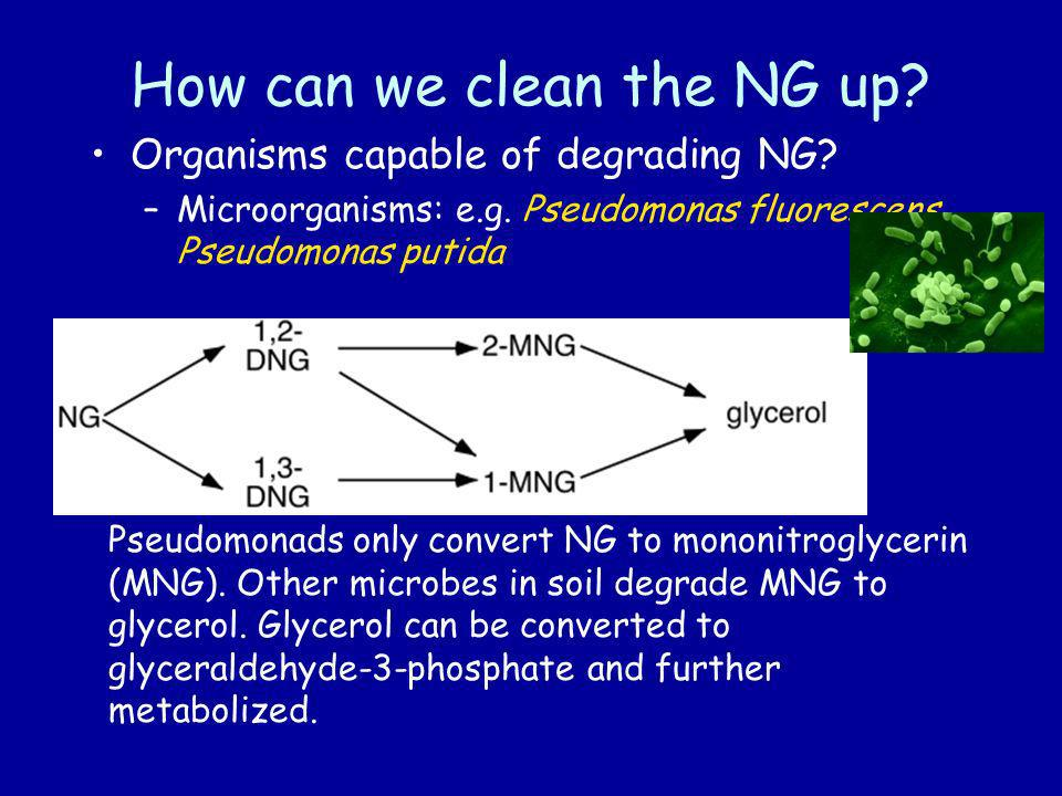 How can we clean the NG up