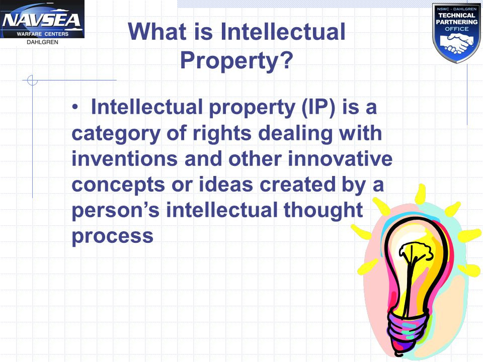 Patents and Intellectual Property Essay