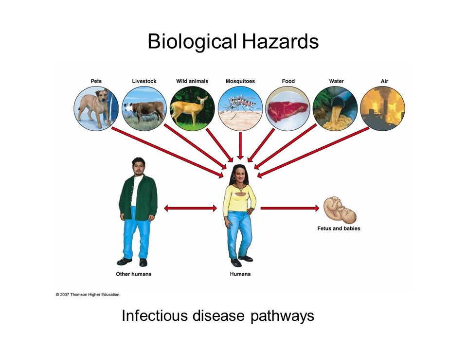 the hazards of the infectious diseases in developing countries to the american people A podcast highlighting key articles in the current issue of emerging infectious diseases, a journal from the centers for disease control and prevention (cdc.