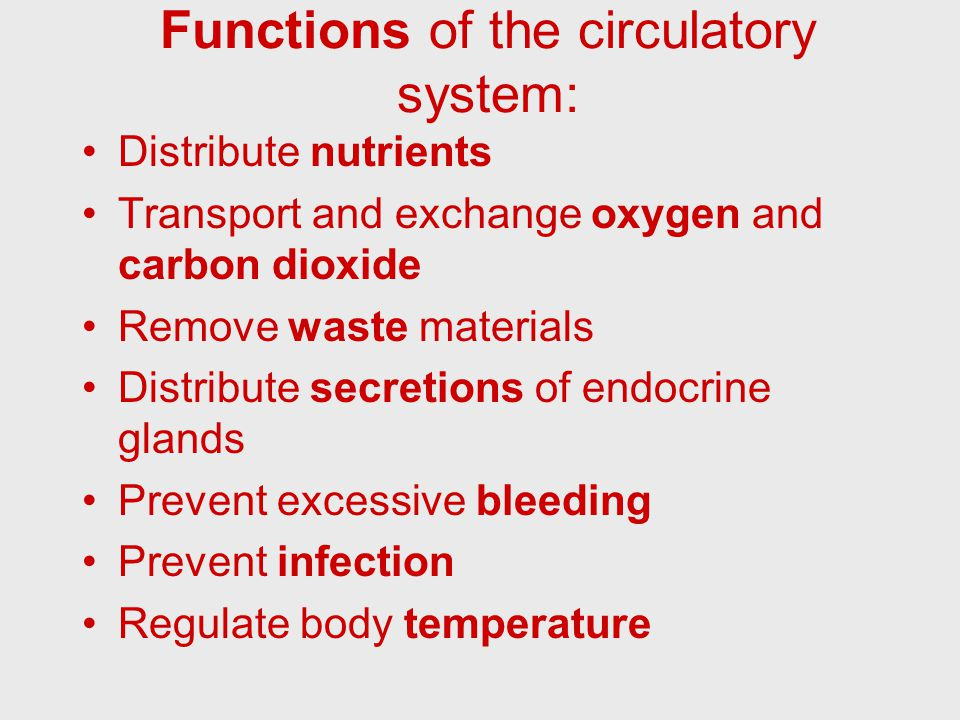 Carbon Dioxide Removal Systems : The circulatory system ppt video online download
