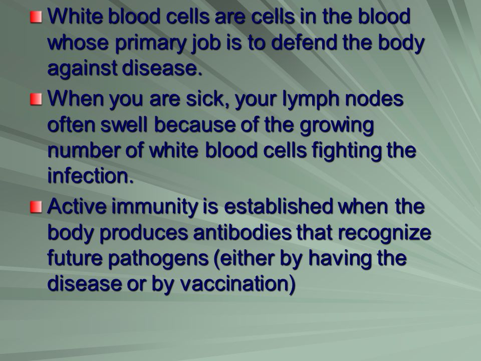 White blood cells are cells in the blood whose primary job is to defend the body against disease.