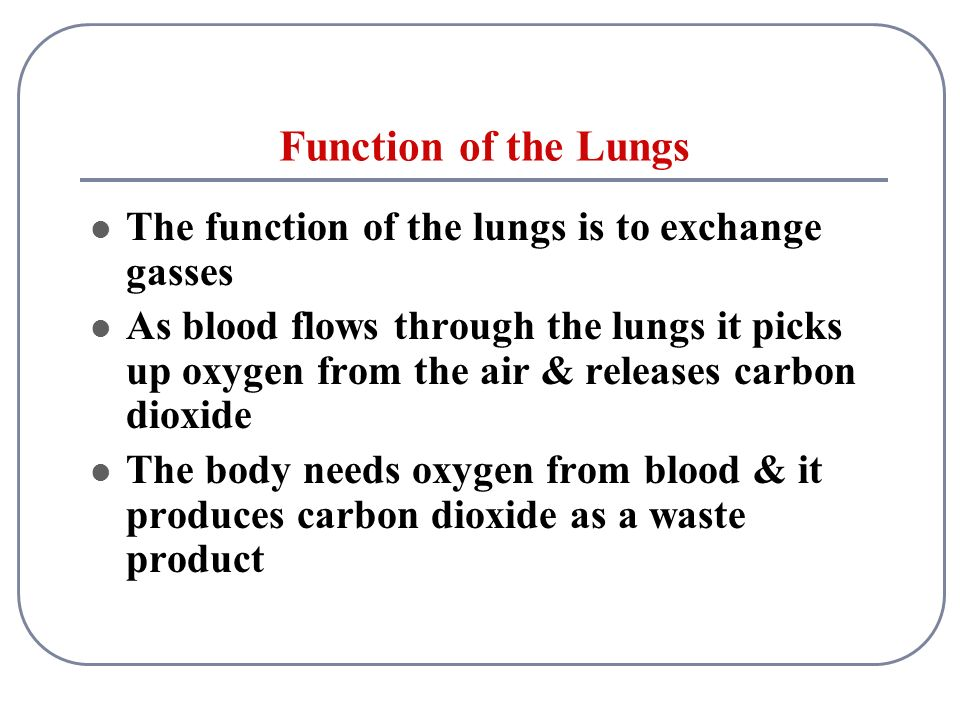 the role of the lungs Phonation is the creation of sound by structures in the upper respiratory tract of the respiratory system during exhalation, air passes from the lungs through the.