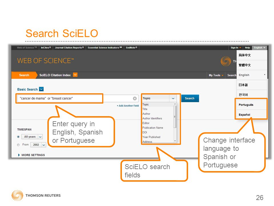 Search SciELO Enter query in English, Spanish or Portuguese