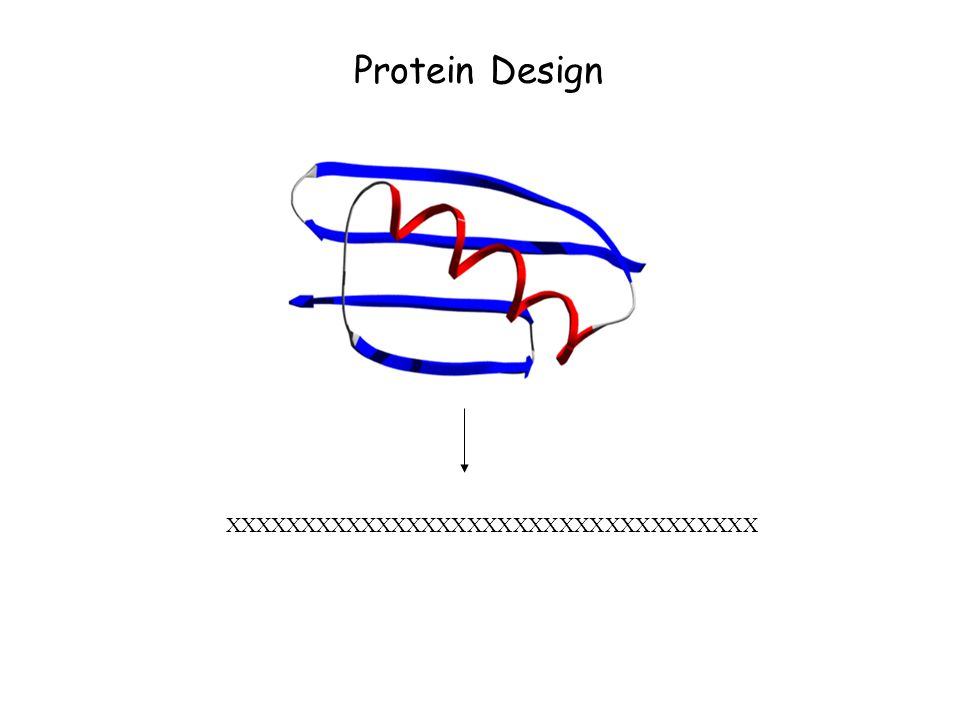 Protein Folding Protein Structure Prediction Protein ...