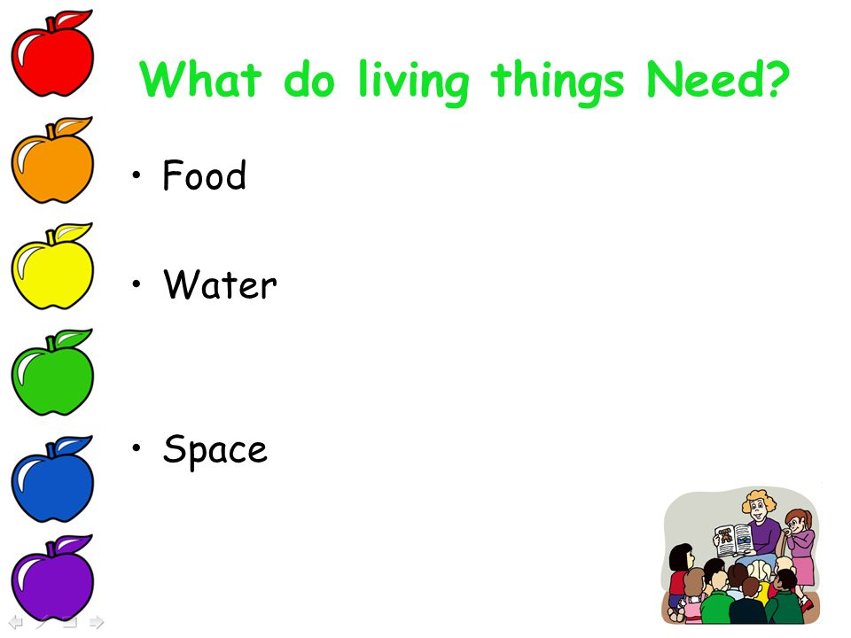 why do living things need energy Define energy and discuss why living things need it to survive, as outlined on  slide 5 of the  where do living things get their energy from.