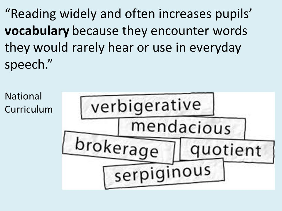 Reading widely and often increases pupils' vocabulary because they encounter words they would rarely hear or use in everyday speech.