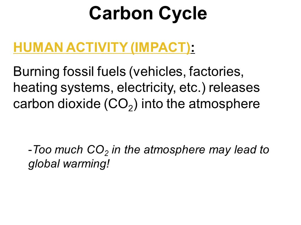 impact humans put on the carbon Every now and again a global warming denier will say that humans aren't putting  much carbon dioxide into the air, and it's less than a lot of.
