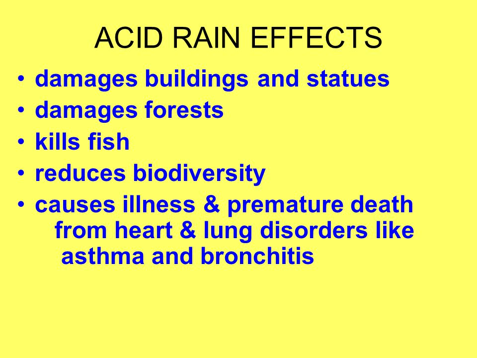 ACID RAIN EFFECTS damages buildings and statues damages forests