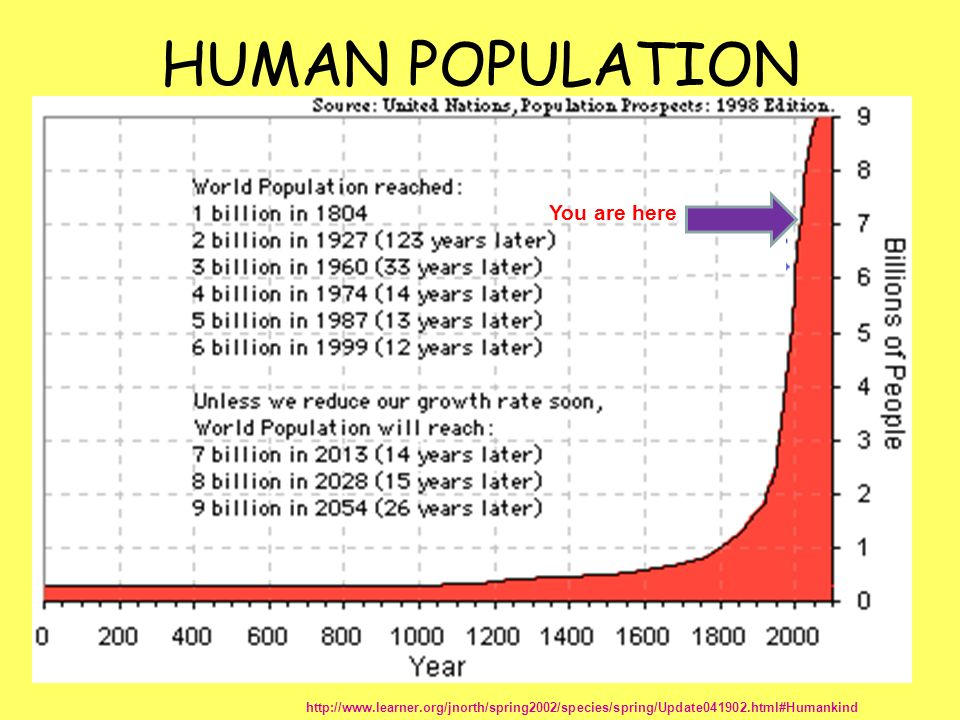 HUMAN POPULATION You are here