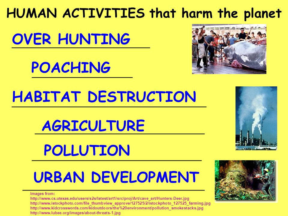 HUMAN ACTIVITIES that harm the planet