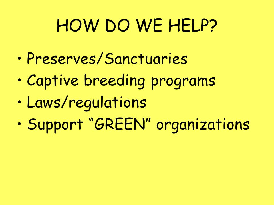HOW DO WE HELP Preserves/Sanctuaries Captive breeding programs