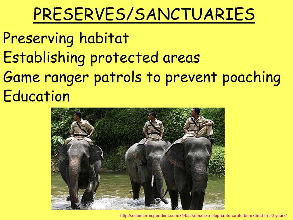PRESERVES/SANCTUARIES