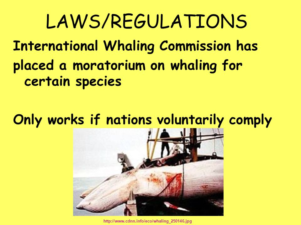 LAWS/REGULATIONS International Whaling Commission has