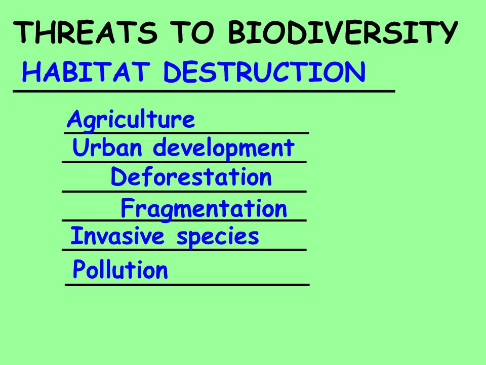 THREATS TO BIODIVERSITY _______________________