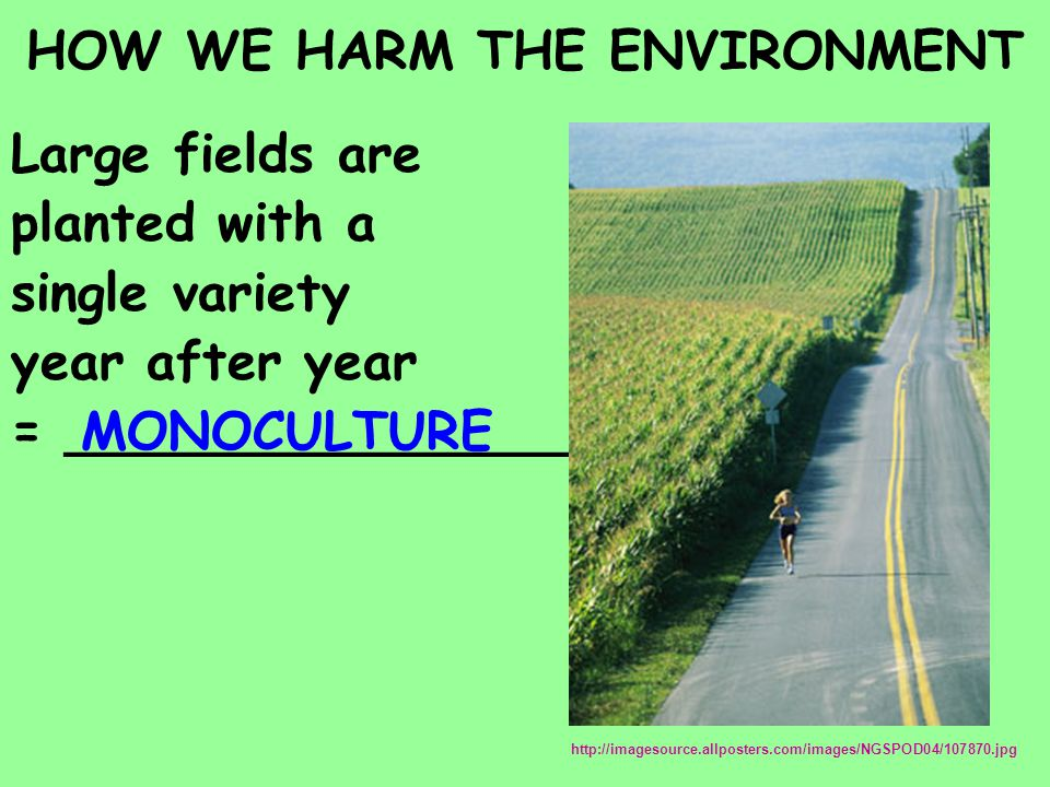 HOW WE HARM THE ENVIRONMENT