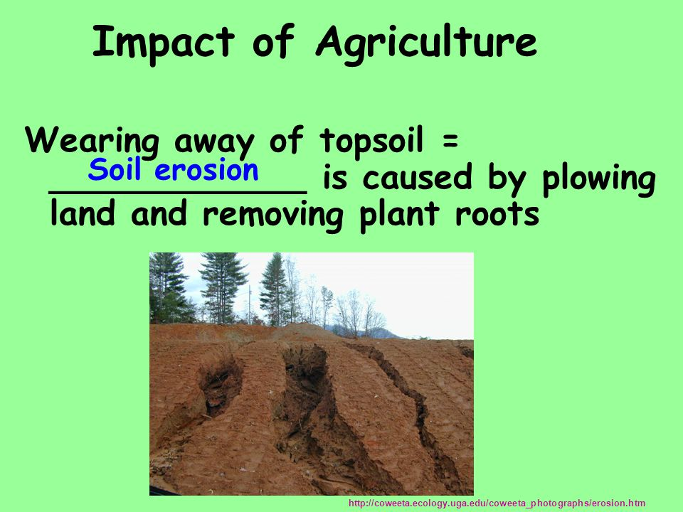 Impact of Agriculture Wearing away of topsoil = ____________ is caused by plowing land and removing plant roots.