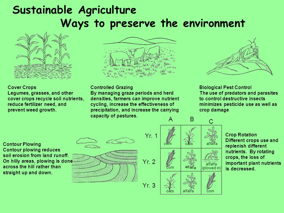 Sustainable Agriculture Ways to preserve the environment