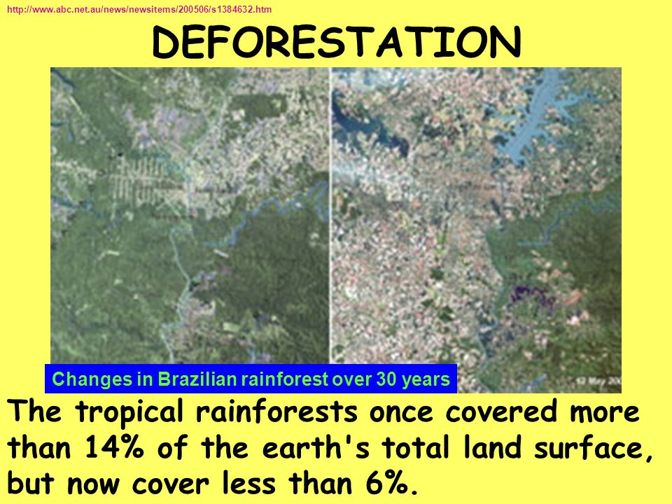 http://www.abc.net.au/news/newsitems/200506/s1384632.htm DEFORESTATION. Changes in Brazilian rainforest over 30 years.