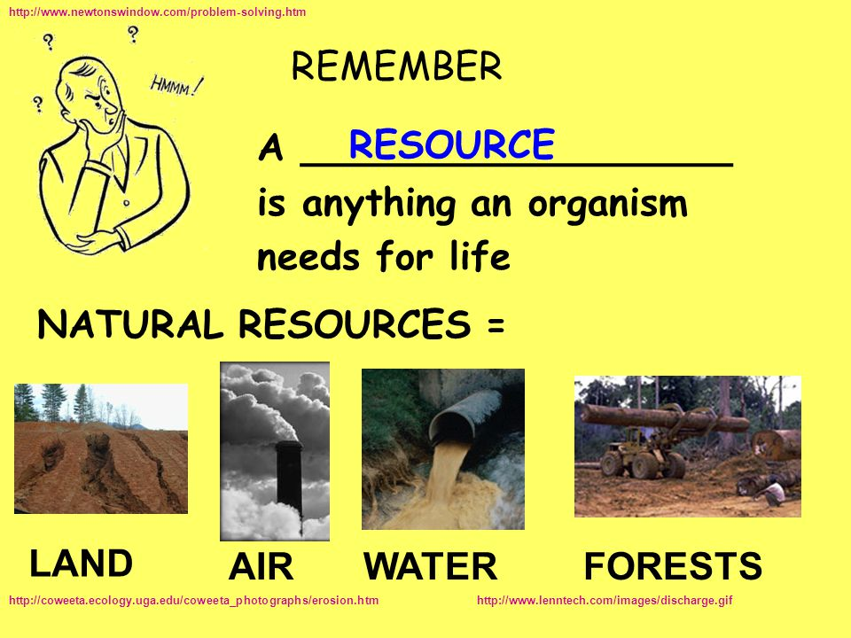 is anything an organism needs for life RESOURCE