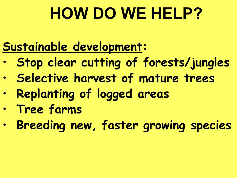 HOW DO WE HELP Sustainable development: Stop clear cutting of forests/jungles. Selective harvest of mature trees.