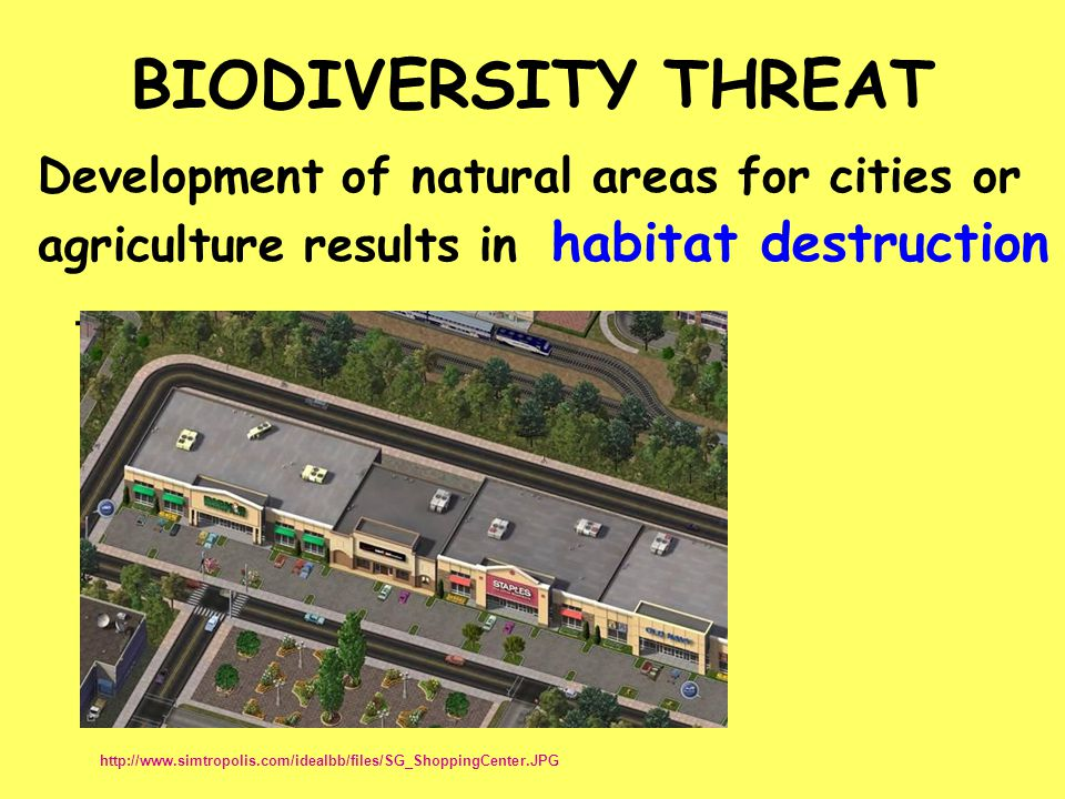 BIODIVERSITY THREAT habitat destruction