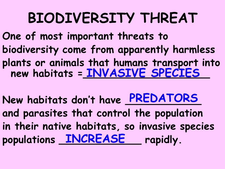 BIODIVERSITY THREAT INVASIVE SPECIES PREDATORS INCREASE