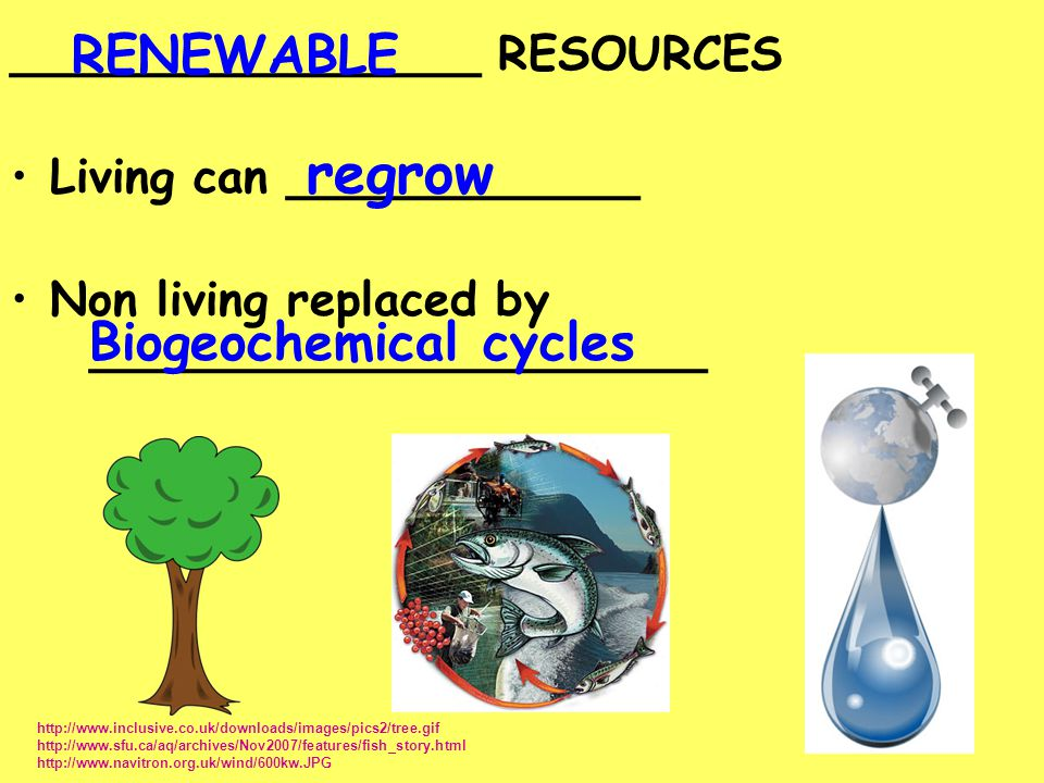 regrow RENEWABLE Biogeochemical cycles ________________ RESOURCES