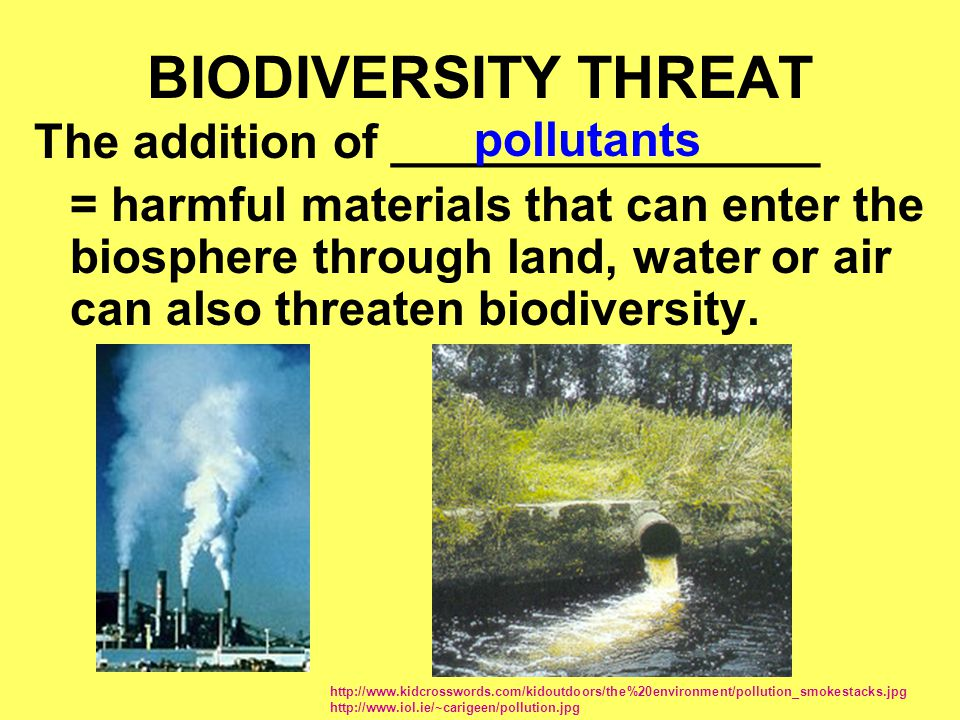 BIODIVERSITY THREAT pollutants The addition of ________________