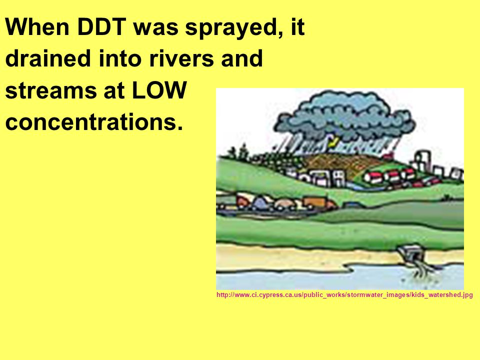 drained into rivers and streams at LOW concentrations.