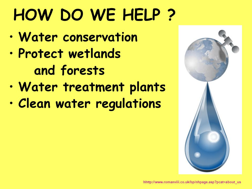 HOW DO WE HELP Water conservation Protect wetlands and forests