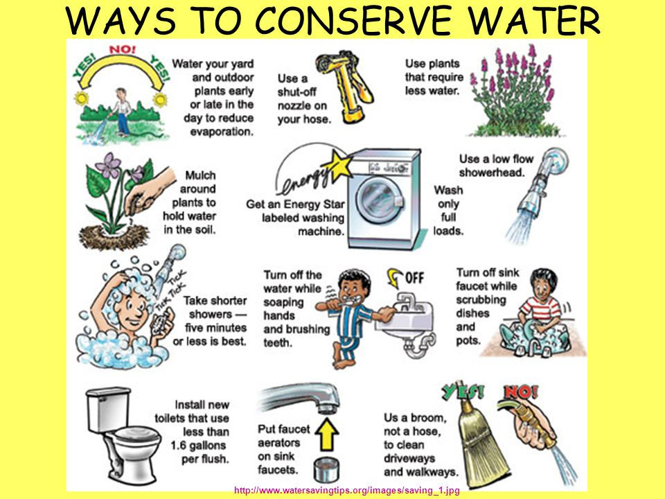 WAYS TO CONSERVE WATER http://www.watersavingtips.org/images/saving_1.jpg
