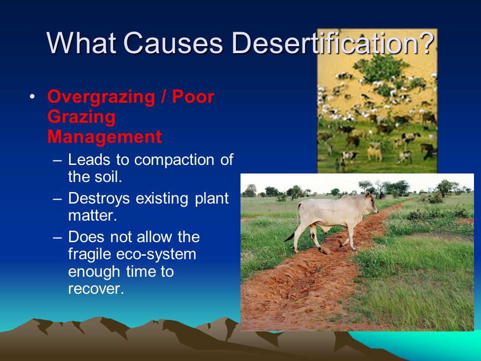 Desertification What Is Desertification Ppt Video