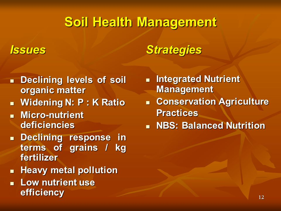 Rice production and productivity ppt video online download for Soil use and management