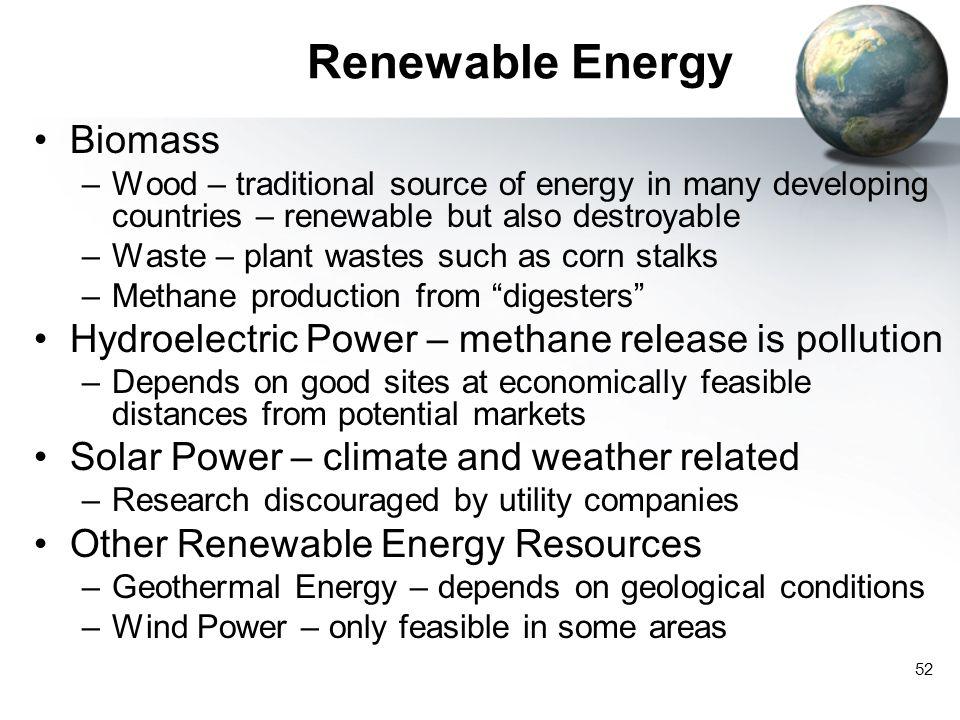 Renewable Energy Biomass