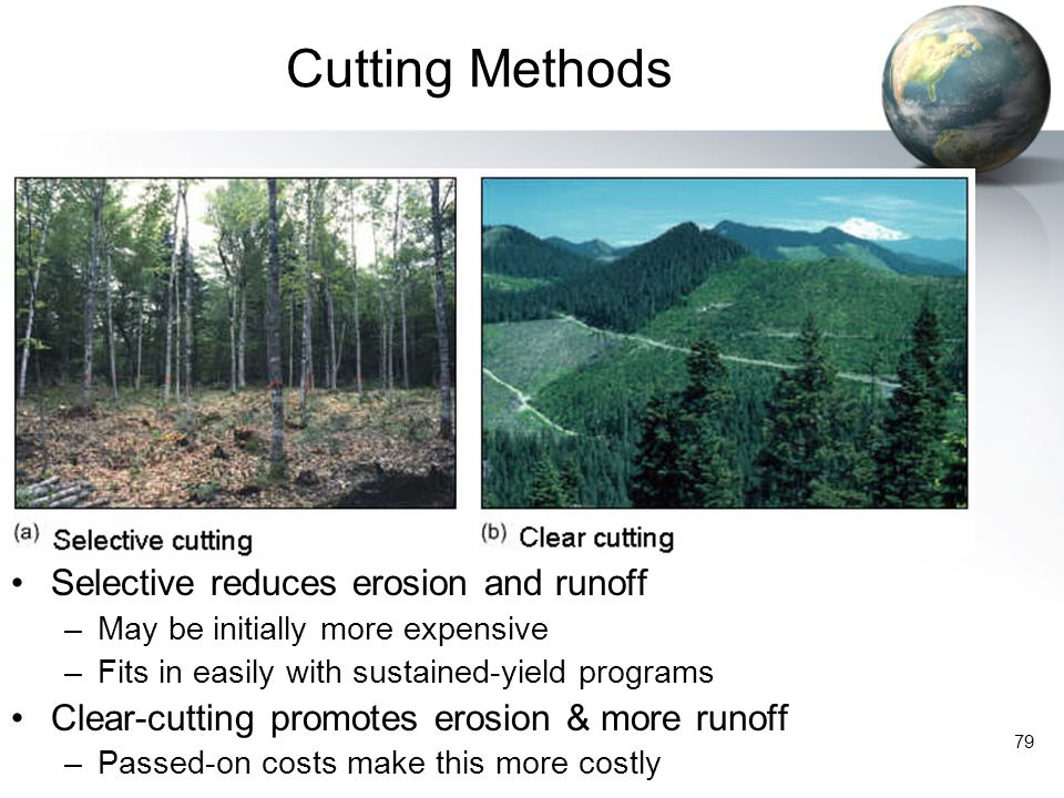 Cutting Methods Selective reduces erosion and runoff