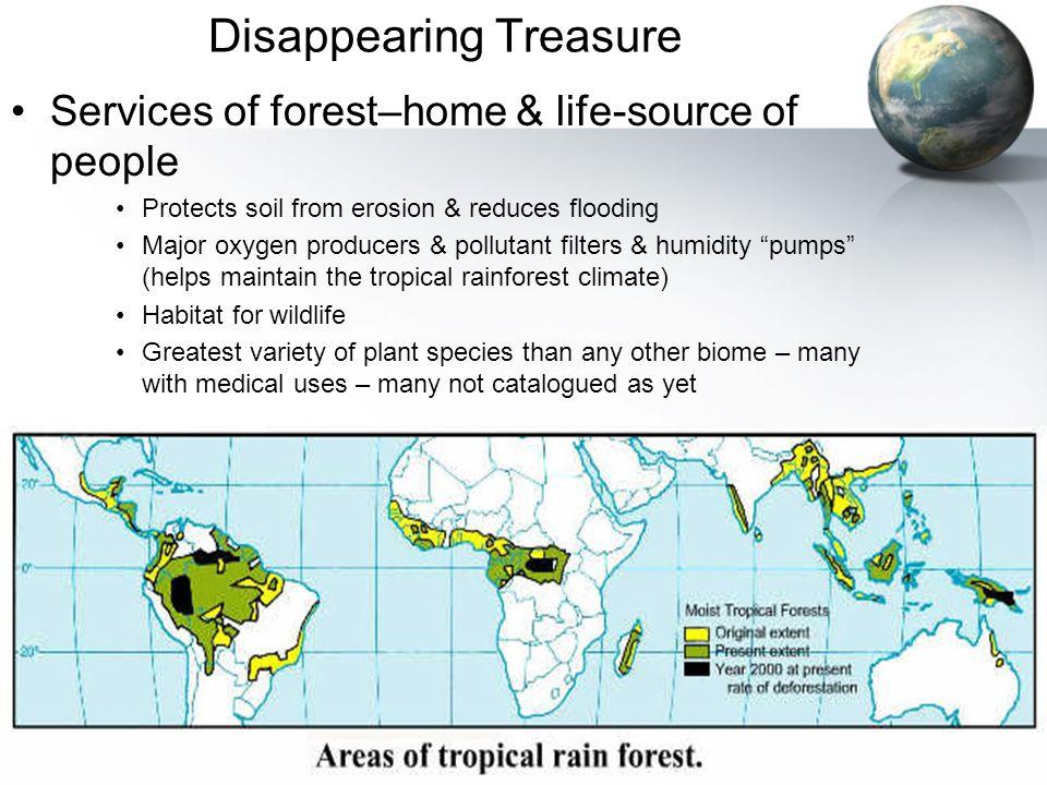 Disappearing Treasure